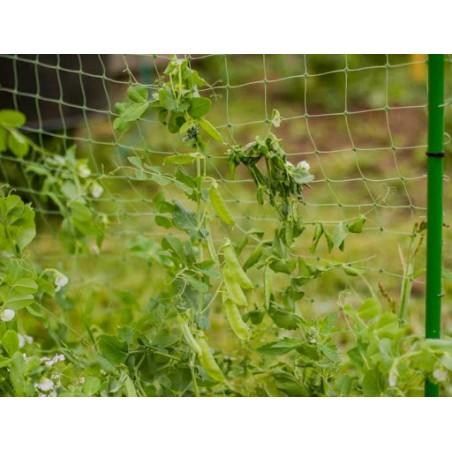 """Boccola bicono 22x1 / 2 """"maschio - MT"""